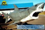 Theme park animals animatronic ( Shark ) DWA023