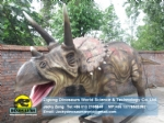 Life Size Dinosaur Replica( Triceratops ) DWD038-2