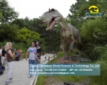Big allosaurus in zigong animatronic dinosaur factory DWD1456