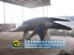 School science education whale​​ model animatronic whale​​ DWA063-1