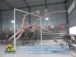 Custom museum exhibition pterosaur complete skeleton replica DWS036