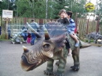 Buy Jurassic Forest Kids Dinosaur Triceratops Ride DWW001