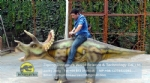 Hot Sale Big Size Walking Dinosaur Triceratops Ride For Kids DWW010